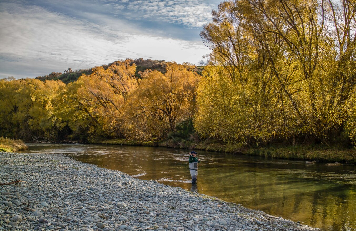 Autumn dry fly fishing for wild trout. Todd Adolph