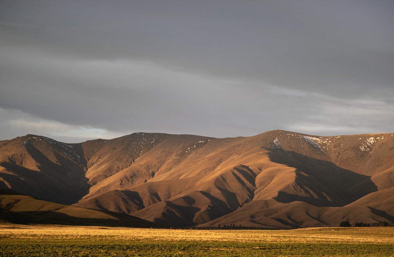 Evening drives on the way home from the river in Otago can be something to savour. Todd Adolph