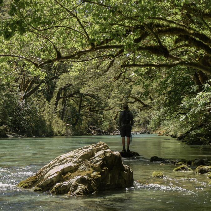 New Zealand Back country crystal clear water Todd Adolph